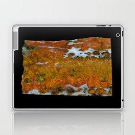 Texas Plume Agate Laptop & iPad Skin