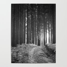 Forest (Black and White) Poster