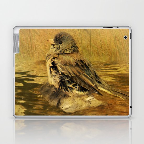 The Bathing Junco Laptop & iPad Skin