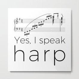 I speak harp Metal Print