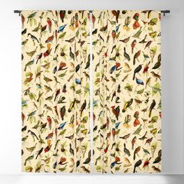 Vintage Birds of Brazil Designs Collection Blackout Curtain