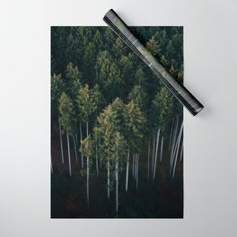 Aerial Photograph of a pine forest in Germany - Landscape Photography Wrapping Paper