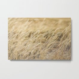 Dancing with the wind Metal Print