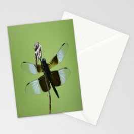 Dragons do fly!!! Stationery Cards