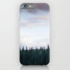 Alaska Trees in Denali National Park iPhone 6s Slim Case