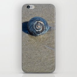 Sea Shell iPhone Skin
