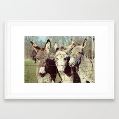 three donkeys Framed Art Print
