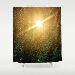 Rosemary Sunrise Shower Curtain
