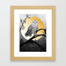 Golden Owl Framed Art Print