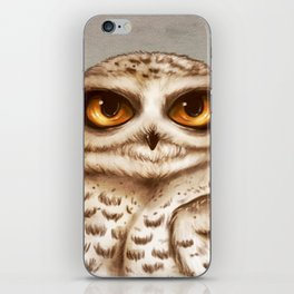 Snow Owl Big Eyes iPhone Skin