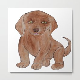 Barking Mad Chocolate Dog Metal Print