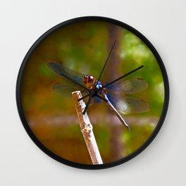 Soul Flyer Wall Clock