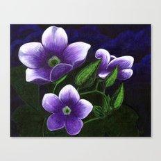 Skyvines Canvas Print