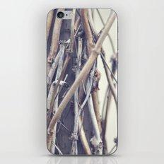 bundled iPhone & iPod Skin