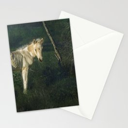 Little Blue-Eyed Filly Stationery Cards