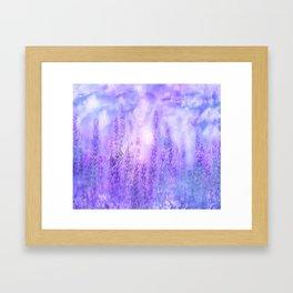 Lavender fields Framed Art Print