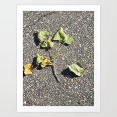 Brotherhood Of Leaves Art Print