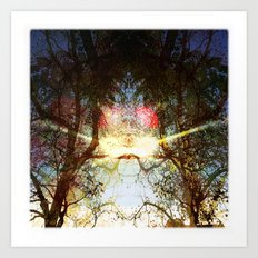 Look Light Art Print