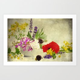 Garden weeds little helpers from nature Art Print