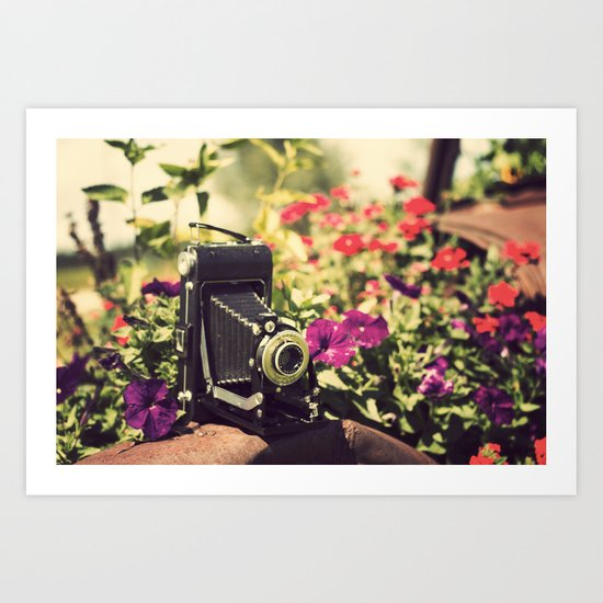 When I'm with  my camera , I know no fear.  Art Print