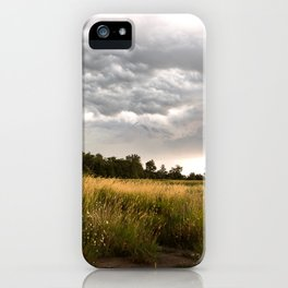 Stormy fields iPhone Case