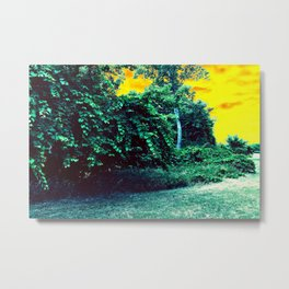 Beating Around the Bush at Sunset Metal Print