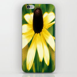 Vibrant Yellow Coneflower iPhone Skin