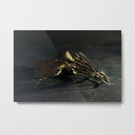 Esteban Metal Print