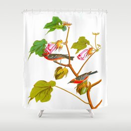 Bay-breasted Warbler Bird Shower Curtain