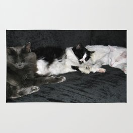 3 cats lounging Rug