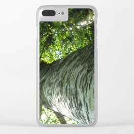 Sacred Birch by Mandy Ramsey, Haines, AK Clear iPhone Case