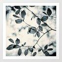 leaves by dada22