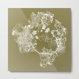 Physarum Polycephalum (slime mould) Metal Print