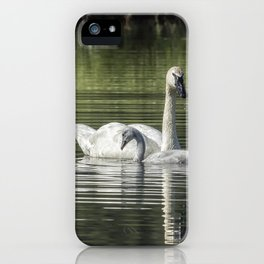 Swan with Cygnet iPhone Case