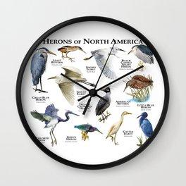 Herons of North America Wall Clock