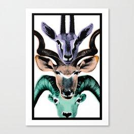 Savanna Creatures Canvas Print