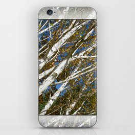 AUTUMN BIRCH TREES iPhone Skin