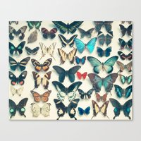 wings Canvas Prints featuring Wings by Cassia Beck