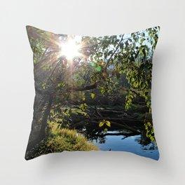 Blackwood Evenings Throw Pillow