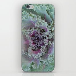 Cabbage Fractal iPhone Skin