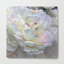 Divine Clouds And Angel Wings Flower Close-Up Metal Print
