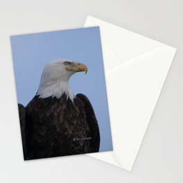 Bald Eagle on Watch along the Kenai River Stationery Cards