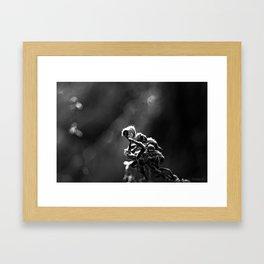 Dead Frost Framed Art Print