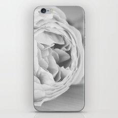Early Roses - Black & White iPhone & iPod Skin
