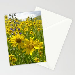 Golden meadow Stationery Cards