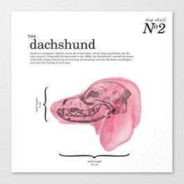 The Dachshund Canvas Print