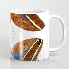 Vintage Moth Collection Coffee Mug