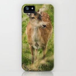 Hi Deer! iPhone Case