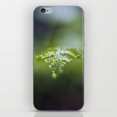 Raining Green iPhone & iPod Skin