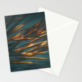 Spirits of the Wind Stationery Cards